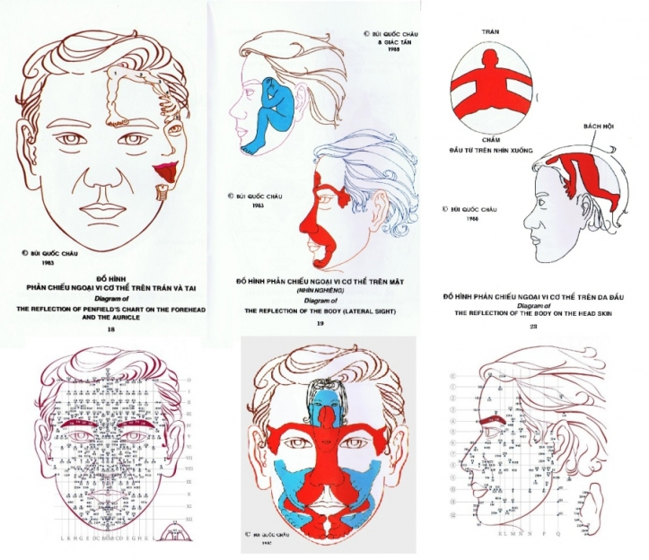 rflewssologia (3)
