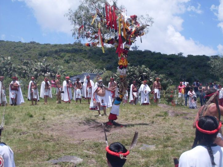 danzasol (1)