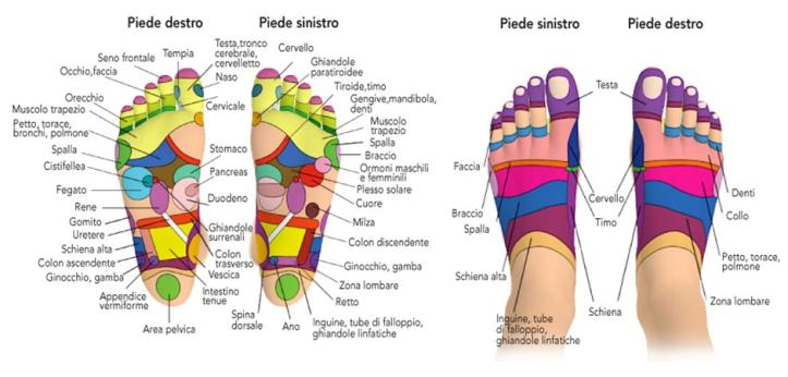 piedi (1)