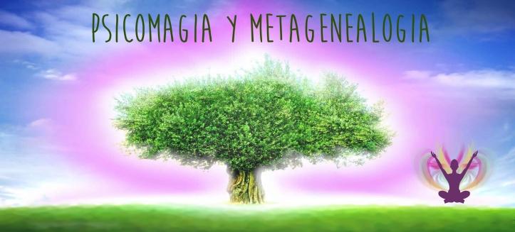meta (2)