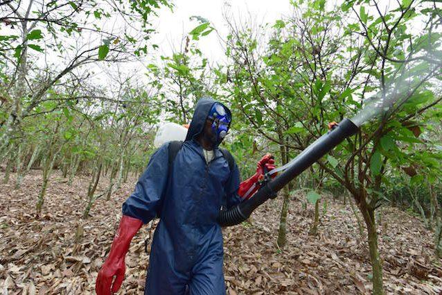 pesticidi-salute-638x425[1]
