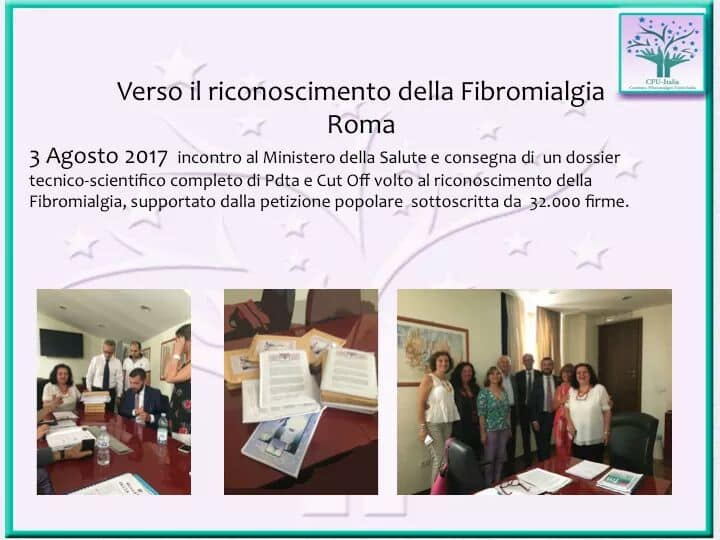 fibro (2)