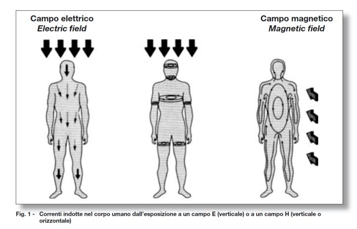 effetti-campi-elettromagnetici[1]