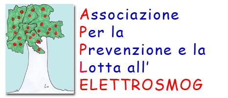 masiero (2)